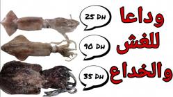 الفرق بين سمك الكلمار والبسمان و السيبيا